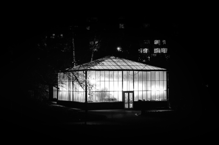 greenhouse in the dark